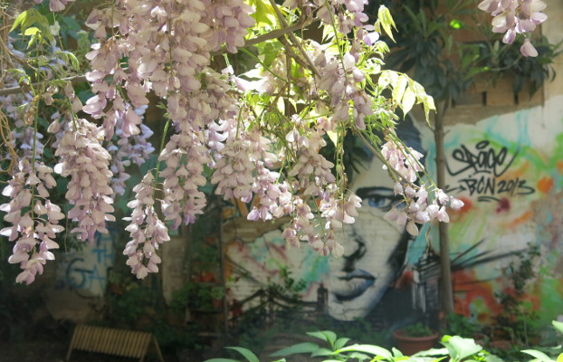 Graffiti en un jardín urbano.