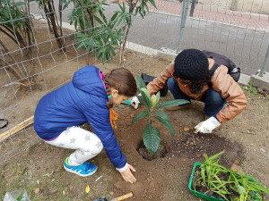 Niñas trabajando en un jardín urbano.