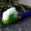 Cepillo con cabezal extraíble y con pasta de dientes casera.