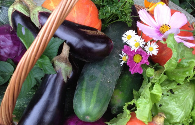 Cistell ple d'hortalisses. Cooperativisme de consum agroecològic