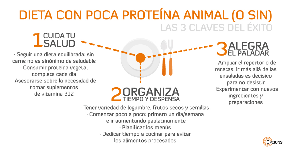 Dieta sin carne infografía claves de éxito
