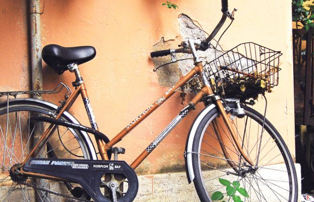 Bicicleta   Autora: Joana Ariet Porta