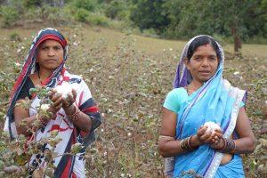Treballadores de l'Índia a les plantacions de Chetna Organic